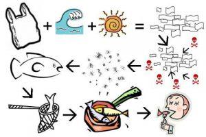 plastik, mikropalstik, ryby, morze, fale, człowiek