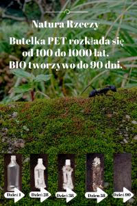 opis, zdjęcie, mrówka, butelka