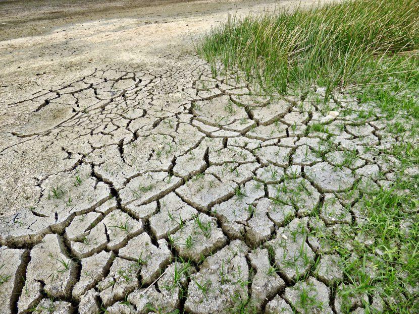 ziemia, pęknięcia, susza, kimat